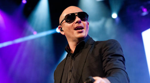 Pitbull Getty Images